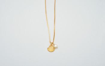 Goldene Halskette mit goldener Muschel und Süsswasser Perle