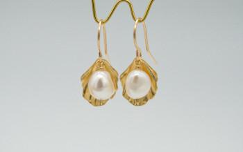Goldene Muschel Ohrringe mit Süsswasser-Perle