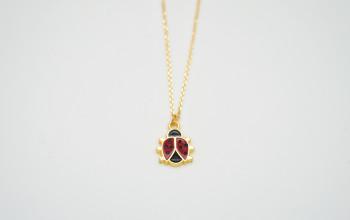 Goldene Halskette mit Glücks-Käfer